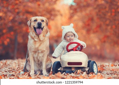friendship - little boy with pedal car with his dog
