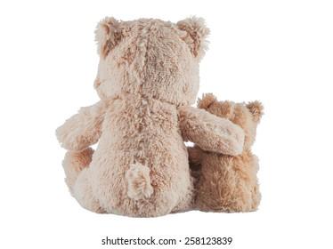 Friendship - two teddy bears.