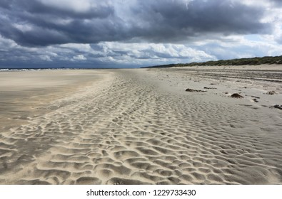 Friesland beach. Wadden sea, North sea.