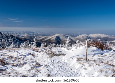 The frigid climate along the Appalachian Trail on top of Round Bald in the Blue Ridge Mountains.