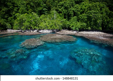 A fringing coral reef grows along the edge of a lush tropical island in the Solomon Islands. These diverse islands lie in the easternmost corner of the Coral Triangle.