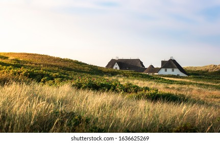 Frisia specific houses with reed roof and hills with marram grass and moss, on Sylt island, Germany, on a summer day. Northern german rural scenery.