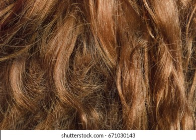 Frizzy mess problem hair. Damaged and split ends