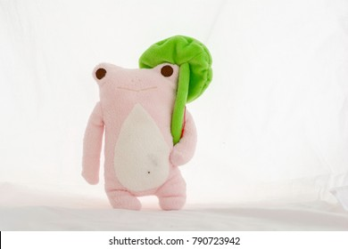 Frog doll with lotus leaf  on a white background