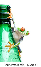 frog on a bottle - a red-eyed tree frog (Agalychnis callidryas) hanging on a wet green water bottle with water droplets, closeup and isolated on white