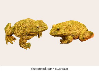 Frog sculpture collection on white background