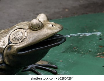 Frog sculpture with steaming water