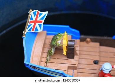 frog at ship with UK flag