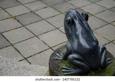 Frog statue stand alone on the stone.He will jumping to the block slob concrete floor in the park.