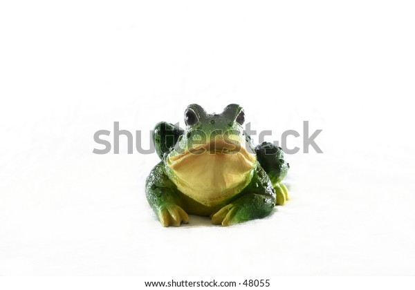 Frog with white background.