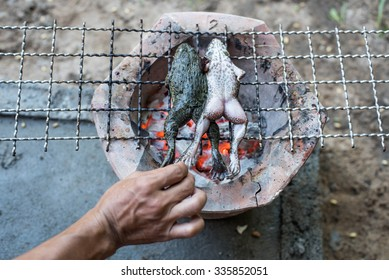 Frogs gets grilled on the steel grating for cooking,Thai style food