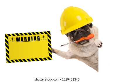 frolic construction worker pug dog with constructor helmet, holding orange screwdriver and yellow warning sign board, isolated on white background