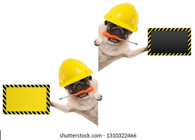 frolic mechanic construction worker pug dog with constructor helmet, holding orange screwdriver and blank yellow and black sign board, isolated on white background