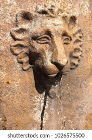 """""""From the Mouth of the Lion"""" Lion themed, stone water fountain."""