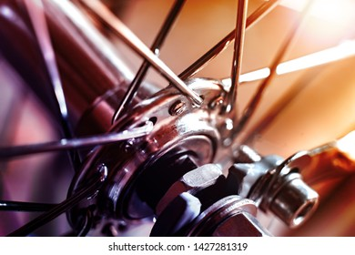 Front Bicycle wheel with spokes. The wheel sleeve is shiny metal. Spokes are chrome. The background is blurred.
