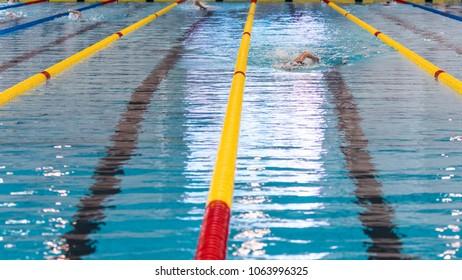 Zwembad hofbad tarieven zwembaden in zuid holland waar gaan we