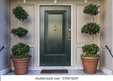 Front door, black front door
