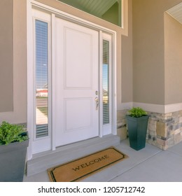 Front door with glass panels and potted plants