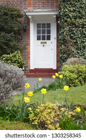 Front door to a period English house in London with a flower garden in spring planted with daffodils