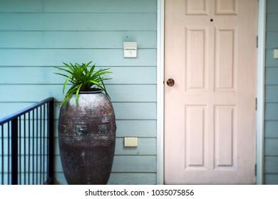 Front Door With Plants.