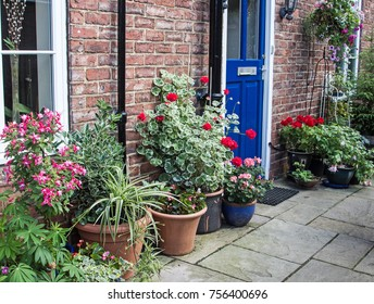 front house door in uk with pots and planters