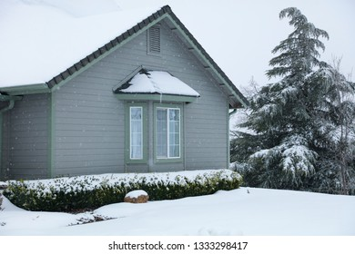 The front of a house during wintertime in the snow.  Plants and trees are covered with fresh snow.