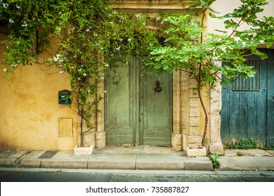 Front of the old yellow building (facade), green historic wooden door (gate), climbing plant and fig tree - landscape. Architecture details and gardening - south Europe (France).