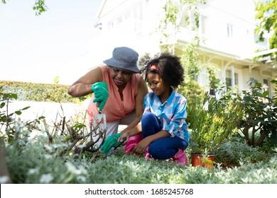 Vue de devant d'une grand-mère afro-américaine avec sa petite-fille dans le jardin, agenouillant et jardinant ensemble. Famille profitant du temps à la maison, concept de style de vie