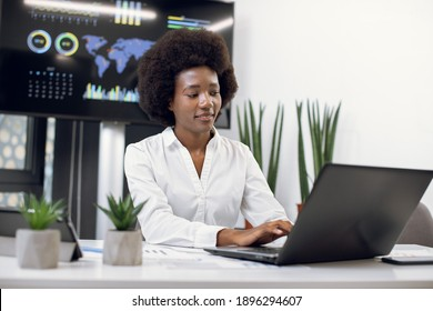 Front view of beautiful smiling concentrated African business lady wearing white formal shirt, with afro hairstyle, which typing on laptop in modern office. Digital wall screen behind