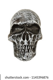 Front View of a Black and White Skull on white background, with space for text. Studio photo.