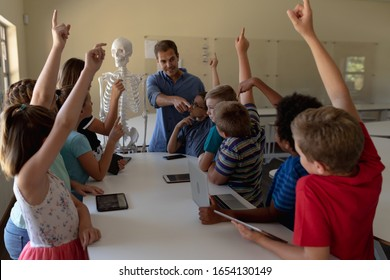 Front view of a Caucasian male teacher using a model of a human skeleton to teach a diverse group of elementary school children during a biology lesson, the children sitting at a table with their