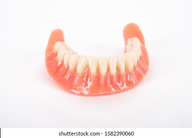 Front view of the denture Lower jaw.  Dental hygienist checkup concept with teeth model dentures. Regular dentist checkups