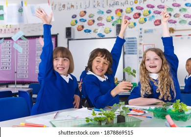 A front view of enthusiastic school kids raising their hands in excitement in a classroom