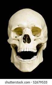 Front view of a fake skull with open mouth isolated on black background