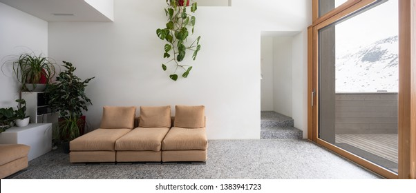 Front view with granite sofa, plant and stairs. Copy space