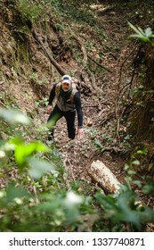 Front view of hiker in a forest climbing up and looking to the camera