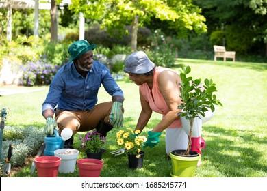Vorderer Blick auf das ältere afroamerikanische Paar im Garten, Gartenarbeit und Reden. Familie genießt Zeit zu Hause, Lifestyle-Konzept