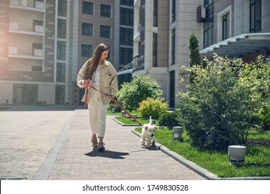Front view of a smiling long-haired pretty woman taking her cute pet for a walk