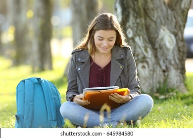 Front view of a student girl studying reading notes outdoors sitting on the grass in a park