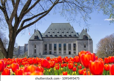 Front  view of Supreme Court of Canada, Ottawa, Canada with full bloom red tulips in front