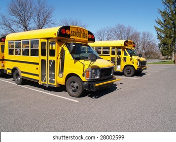 front view of two short yellow school buses