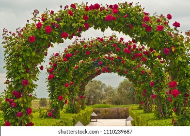 Front view of a wedding archway of roses at a winery in southeast Spain