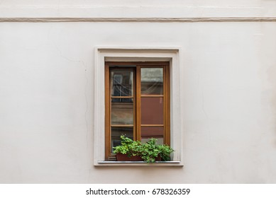 Front view window decorated flowerpot with flowers
