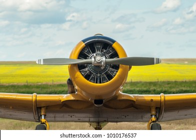 Front view of yellow single engine propeller airplane on the ground