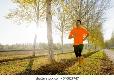 front view of young sport man running outdoors in off road trail track with trees under Autumn sunlight in fitness, countryside training and healthy lifestyle concept