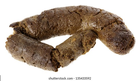 Frontal view of a nice and fresh canine excrement isolated on white background.
