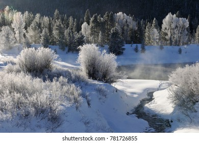 frost along the Snake River, Grand Tetons, WY