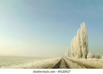 Frost covered trees on the edge of the forest near the railway track.