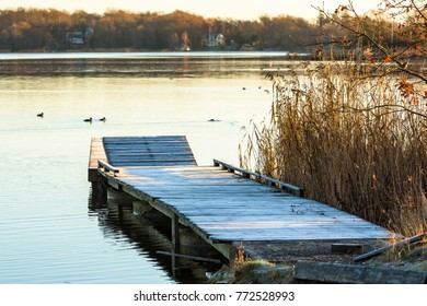 Frost covered wooden pier in coastal landscape on a cold morning. Reed beside pier and coastal landscape with birds in water in background. Location Nattraby outside Karlskrona, Sweden.