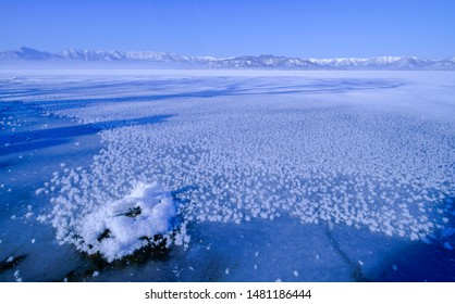 Frost flowers on Kusyaro-lake in Japan. Many frosted flowers can be seen on the lake, which is rarely frozen in the morning when it is cold and cold.